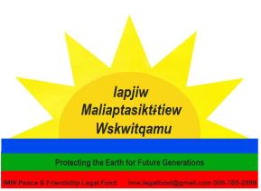 elsi flag